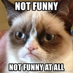 Angry Cat Meme - Not Funny Not Funny at All