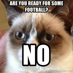 Angry Cat Meme - Are You Ready for Some Football? NO