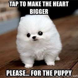 more meat for my duck - Tap to make the heart bigger Please… for the puppy