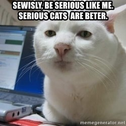 Serious Cat - Sewisly, be serious like me. Serious cats  are beter.