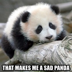 sad panda -  That makes me a sad panda