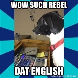 doge - wow such rebel dat english