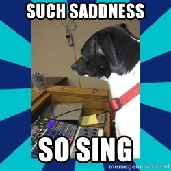 doge - Such saddness So sing