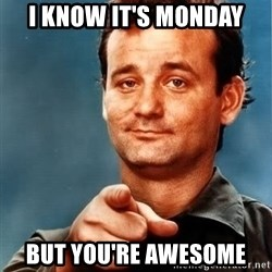 Bill Murray Needs You - I know it's Monday but you're awesome