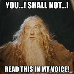You shall not pass - YOU...! SHALL NOT...! read this in my voice!