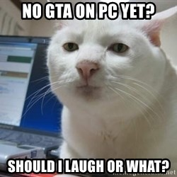 Serious Cat - no gta on pc yet? Should i laugh or what?