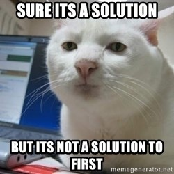 Serious Cat - Sure its a solution but its not a solution to first