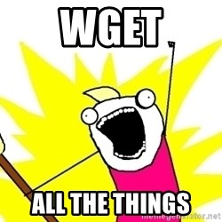 X ALL THE THINGS - wget all the things