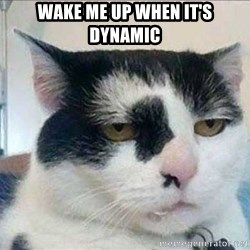 Serious Cat - wake me up when it's dynamic