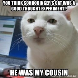 Serious Cat - you think schrodinger's cat was a good thought experiment? he was my cousin