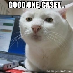 Serious Cat - Good one, Casey...