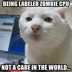 Serious Cat - Being labeled Zombie CPU not a care in the world...