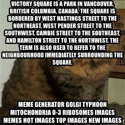 ZOE GREAVES DTES VANCOUVER - Victory Square is a park in Vancouver, British Columbia, Canada. The square is bordered by West Hastings Street to the northeast, West Pender Street to the southwest, Cambie Street to the southeast, and Hamilton Street to the northwest. The term is also used to refer to the neighbourhood immediately surrounding the square. Meme Generator golgi typhoon mitochondria 0-3 ribosomes Images Memes Hot Images Top Images New Images