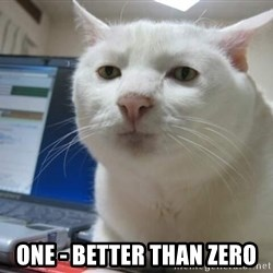 Serious Cat -  One - better than zero