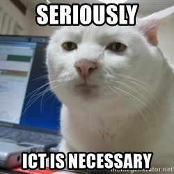 Serious Cat - seriously ICT is necessary