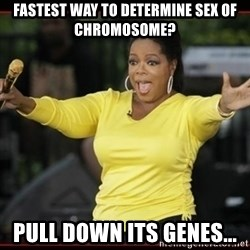 Overly-Excited Oprah!!!  - FASTEST WAY TO DETERMINE SEX OF CHROMOSOME? PULL DOWN ITS GENES...