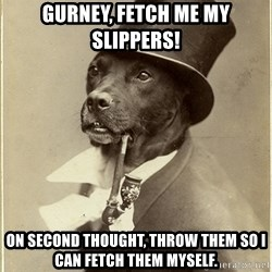 Old Money Dog - Gurney, fetch me my slippers! On second thought, throw them so i can fetch them myself.