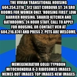 AMBER DTES VANCOUVER - The Vivian Transitional Housing 604.254.3778 - 512 East Cordova St: 24 SRO rooms for women only. 'Housing First' low barrier housing. Shared kitchen and bathrooms. 24 hour staff. Call to apply for housing, or contact VCH at 604.216.8741 and press 2. Pets are welcome. MemeGenerator golgi typhoon mitochondria 0-3 ribosomes Images Memes Hot Images Top Images New Images
