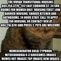 ZOE GREAVES DTES VANCOUVER - The Vivian Transitional Housing 604.254.3778 - 512 East Cordova St: 24 SRO rooms for women only. 'Housing First' low barrier housing. Shared kitchen and bathrooms. 24 hour staff. Call to apply for housing, or contact VCH at 604.216.8741 and press 2. Pets are welcome. MemeGenerator golgi typhoon mitochondria 0-3 ribosomes Images Memes Hot Images Top Images New Images