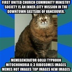 AMBER DTES VANCOUVER - First United Church Community Ministry Society is an inner-city mission in the Downtown Eastside of Vancouver. MemeGenerator golgi typhoon mitochondria 0-3 ribosomes Images Memes Hot Images Top Images New Images