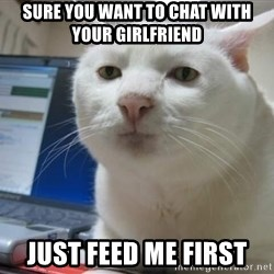 Serious Cat - Sure you want to chat with your girlfriend Just feed me first