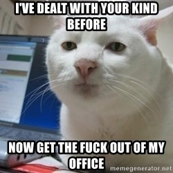 Serious Cat - i've dealt with your kind before now get the fuck out of my office