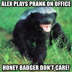 Honey Badger Actual - Alex plays prank on office Honey Badger don't care!