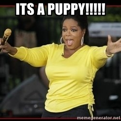 Overly-Excited Oprah!!!  - ITS A PUPPY!!!!!