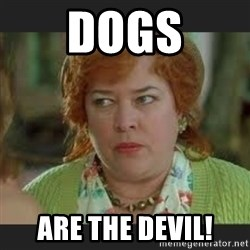 dogs are the devil waterboy mama meme generator,Mama Meme