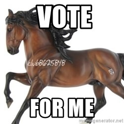 Typical horse model collector -  Vote For Me
