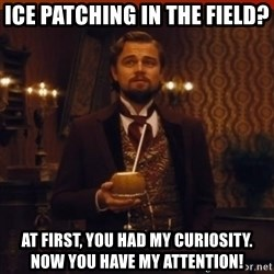you had my curiosity dicaprio - ICE Patching in the field? At first, you had my curiosity.  Now you have my attention!