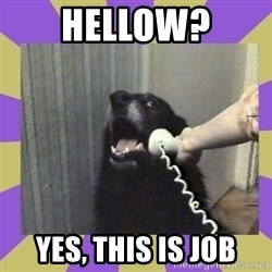 Yes, this is dog! - HELLOW? YES, THIS IS JOB