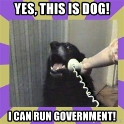 Yes, this is dog! - Yes, this is dog! I can run government!