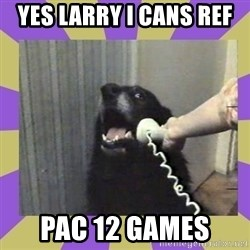 Yes, this is dog! - Yes Larry i cans ref  PAC 12 games