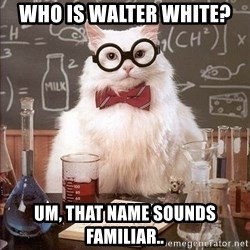 Chemistry Cat - Who is Walter White? Um, that name sounds familiar..