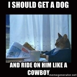 i should buy a boat cat - I SHOULD GET A DOG AND RIDE ON HIM LIKE A COWBOY