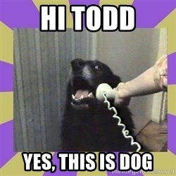 Yes, this is dog! - Hi Todd Yes, this is dog