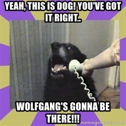 Yes, this is dog! - Yeah, this is Dog! You've got it right.. Wolfgang's gonna be there!!!