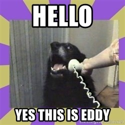 Yes, this is dog! - Hello yes this is eddy