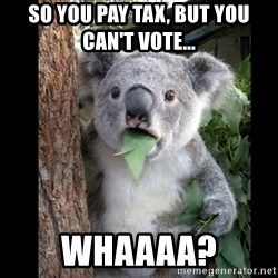 Koala can't believe it - so you pay tax, but you can't vote... Whaaaa?