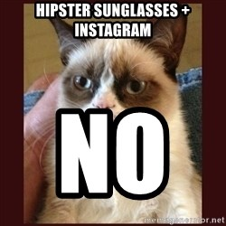 Tard the Grumpy Cat - hipster sunglasses + instagram No