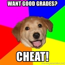 Advice Dog - want good grades? cheat!