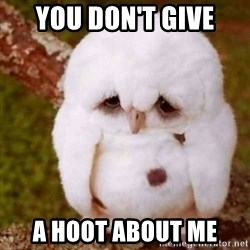 Depressed Owl - You don't give a hoot about me