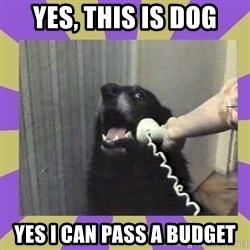 Yes, this is dog! - YES, THIS IS DOG YES I CAN PASS A BUDGET