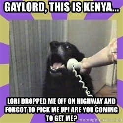 Yes, this is dog! - Gaylord, this is KENYA... Lori dropped me off on highway and forgot to pick me up! Are you coming to get me?
