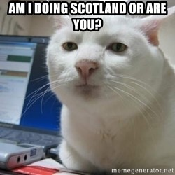 Serious Cat - Am I doing Scotland or are you?