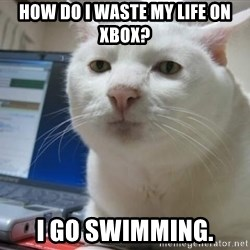 Serious Cat - how do i waste my life on xbox? i go swimming.