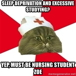 Nursing Student Cat - sleep deprivation and excessive studying? yep, must be nursing student zoe