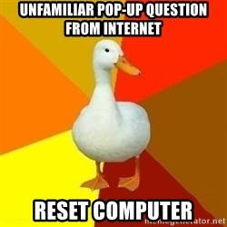 Technologically Impaired Duck - unfamiliar pop-up question from internet reset computer