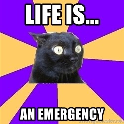 Anxiety Cat - life is... an emergency